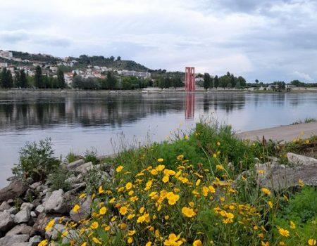 foto2.rio tejojpg